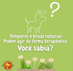 Os benefícios dos temperos e ervas naturais na alimentação dos Pets.