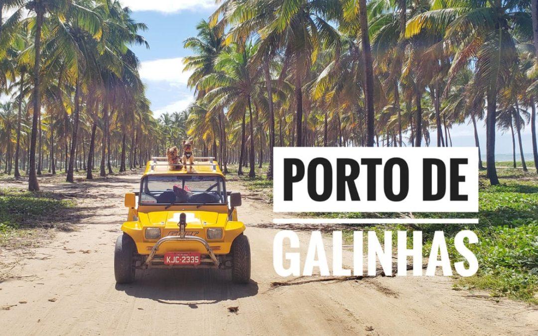 Viagem Petfriendly: Porto de Galinhas/PE