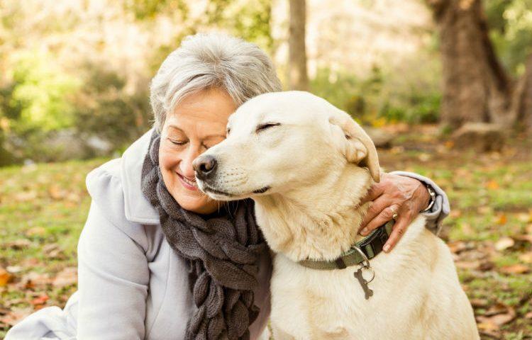 Pets estão ligados diretamente ao  bem-estar para a terceira idade
